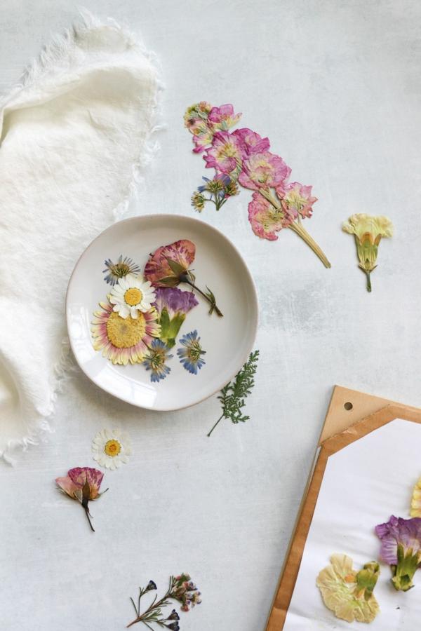 Blumen pressen Blumendeko Ideen getrocknete Sommerblumen