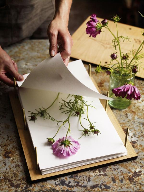Blumen pressen Blumendeko getrocknete Blumen