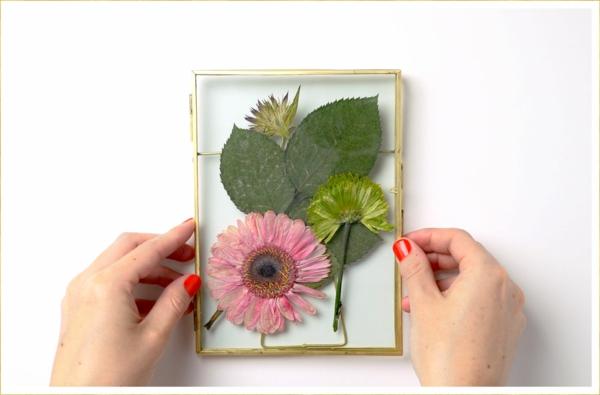 Blumen pressen Wanddeko arangieren Blumen berahmen