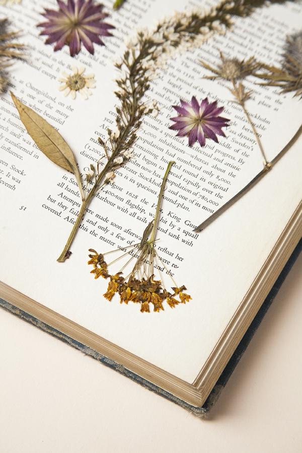 Blumen pressen im Buch Blumendeko arangieren Blumen berahmen