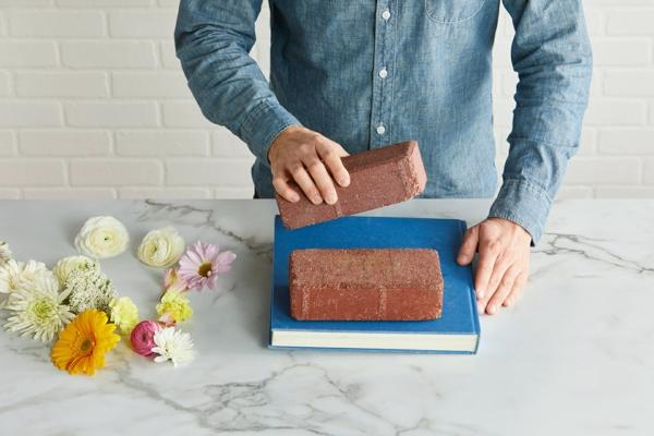 Blumen pressen verschiedene Methoden Buch Gewichte