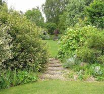 Möchten Sie einen modernen Naturgarten anlegen? Das macht seinen Charakter aus!