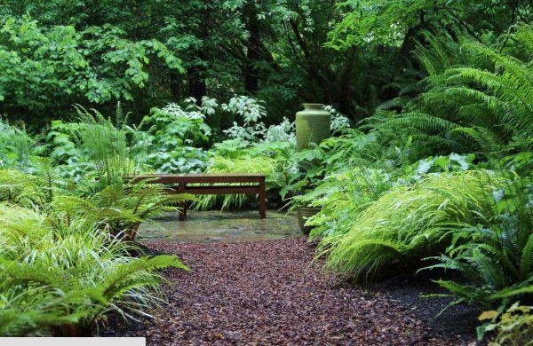 Eine Bank im Innenraum - Naturgarten anlegen
