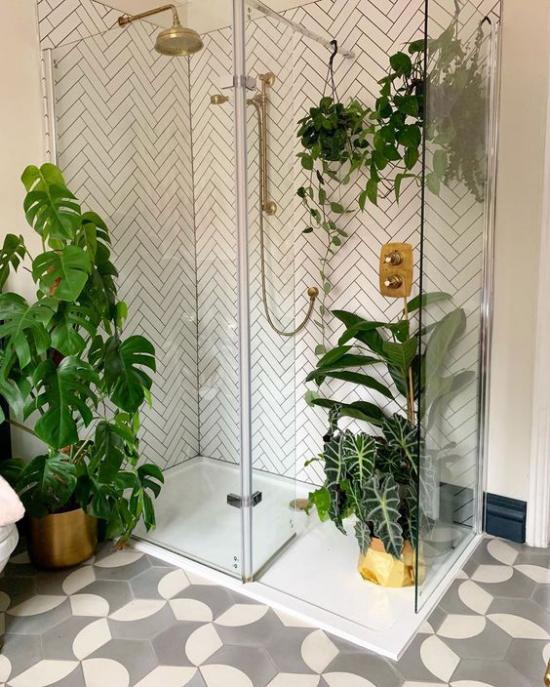Grün im Bad Duschecke Glaswand Philodendron Hängepflanzen gemusterte Bodenfliesen