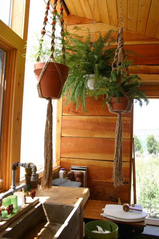 Grün im Bad Farne aller Art gedeihen gut im Badezimmer