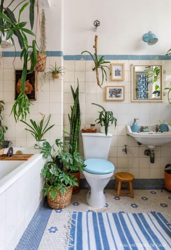 Grün im Bad Luftpflanzen gedeihen ohne Erde passend fürs Bad