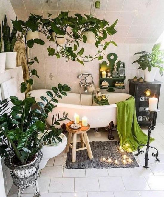 Grün im Bad Zamioculcas oder Glücksfeder genannt Efeutute sorgen für Frische