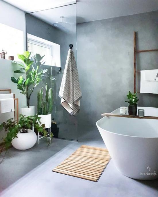 Grün im Bad ein schickes Badezimmer in Grau viele Badpflanzen darunter auch Kakteen