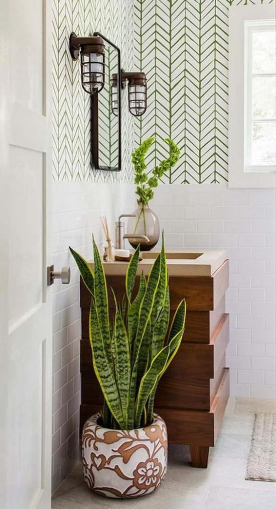 Grün im Bad modernes Badezimmer Bogenhanf im schönen Topf neben Waschtisch