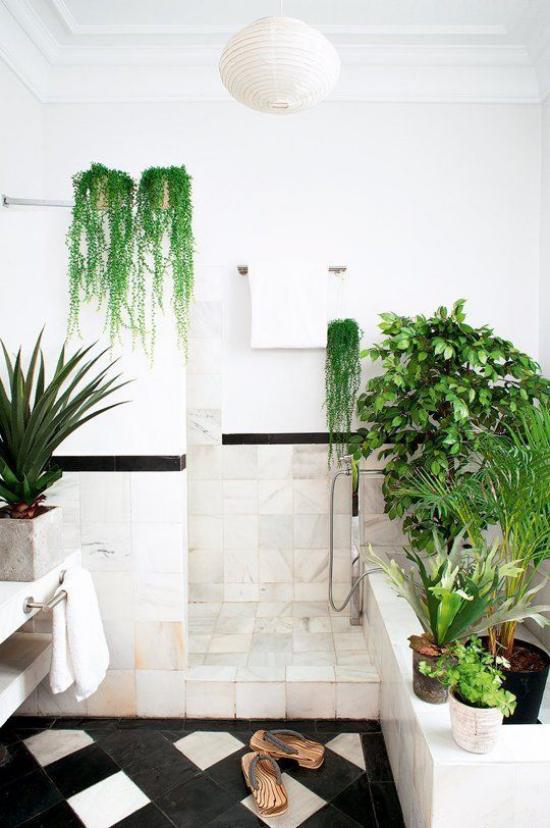 Grün im Bad verschiedene Badpflanzenschmücken das weiße Badezimmer