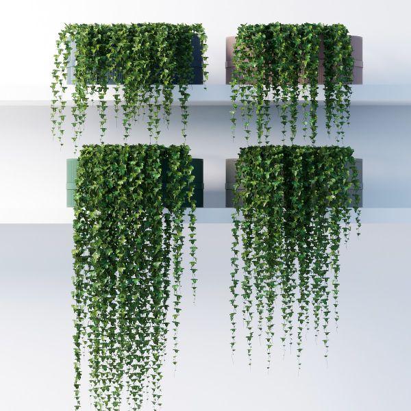 Hohe Wandgestaltung - Balkon bepflanzen
