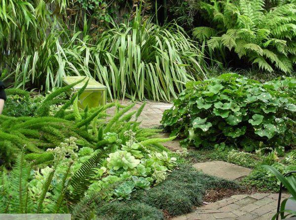 Monochromer Minimalismus - Naturgarten anlegen
