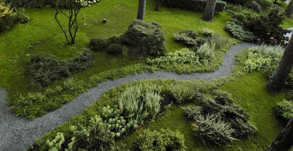 Naturgarten anlegen - eine wunderschöne Wiese - Garten Ideen
