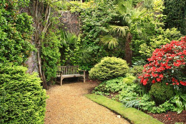 Naturgarten anlegen - grüne und andere Naturakzente