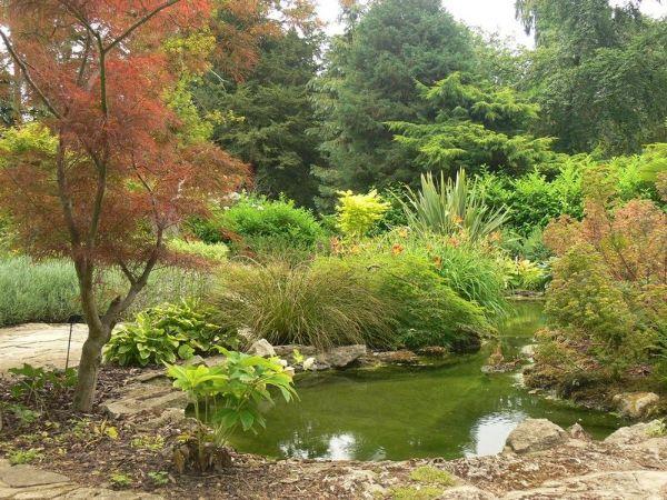 Naturgarten anlegen sehr schöne Ideen