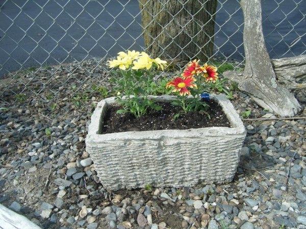 Pflanzenkübel Beton Ideen für den Garten