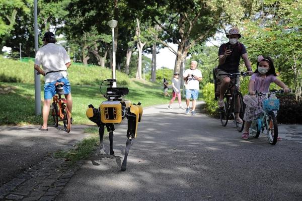 Roboterhund Spot von Boston Dynamics zeigt seinen neuen Fähigkeiten spot im park singapur