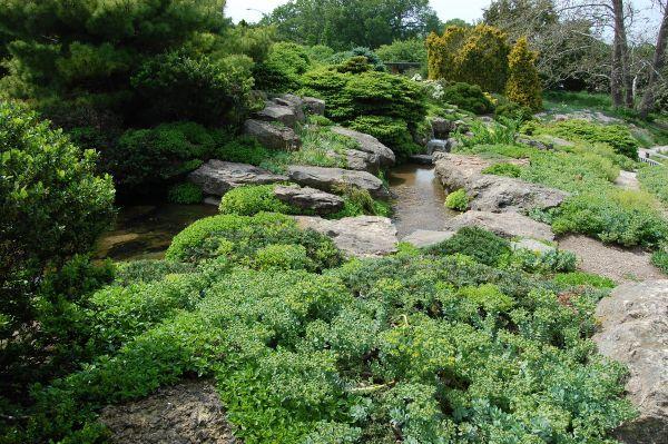 Steine und Naturlandschafte - Naturgarten anlegen