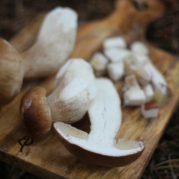Steinpilze zubereiten Pilze mit Stielen schneiden