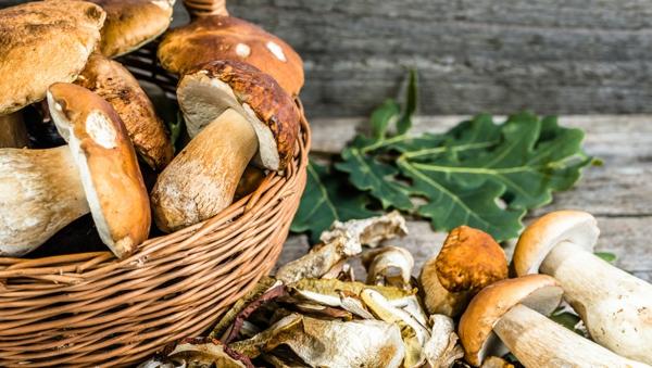 Steinpilze zubereiten Rezept Zutaten