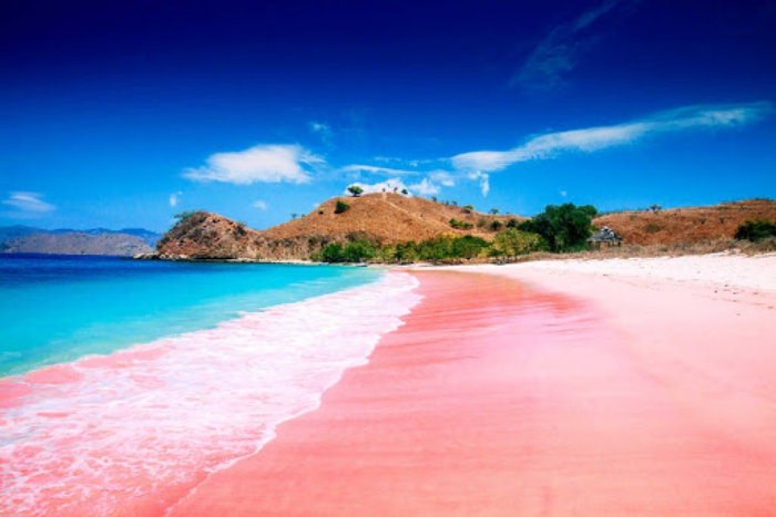 Top 5 der schönsten Strände der Welt Pink Sand Beach Bahamas einmalige Schönheit