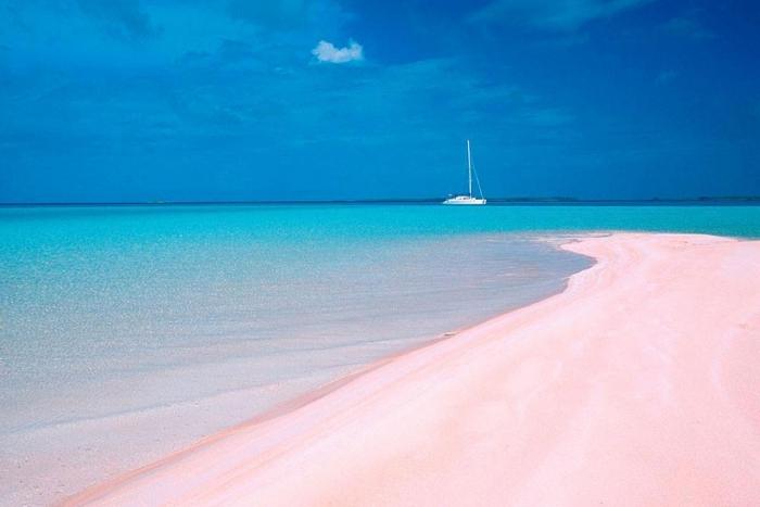 Top 5 der schönsten Strände der Welt Pink Sand Beach ein Paradies auf Erden