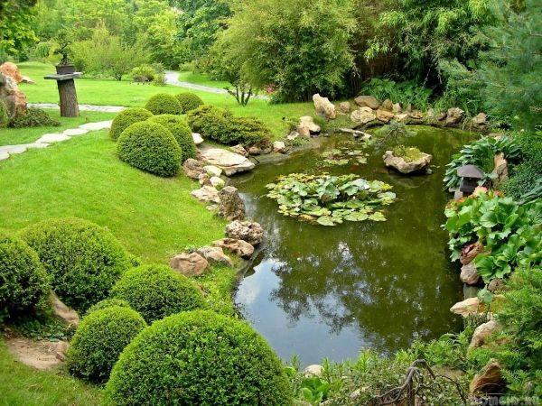 Vefschiedene Elemente in der Gatengestaltung - Naturgarten anlegen