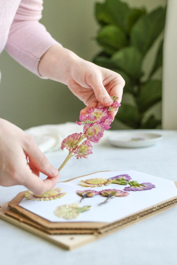 Wie kann man Blumen pressen Blumendeko getrocknete Blumen