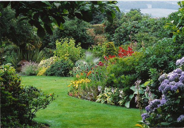 Wiese und schöne Gebüsche - Naturgarten anlegen
