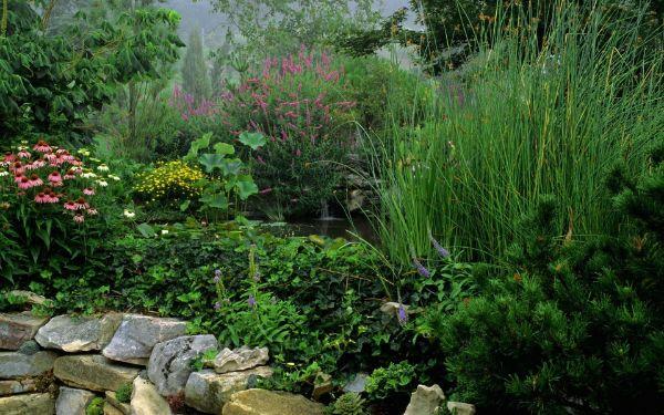 einen sehr schönen Zen Garten - Naturgarten anlegen