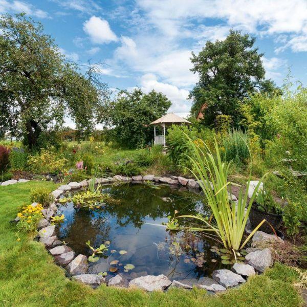 kleiner See Naturgarten anlegen