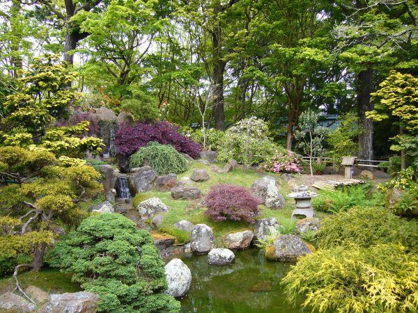 sehr schöne Naturlemente - Naturgarten anlegen