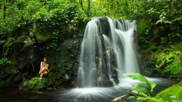 shinrin yoki waldbaden gesunde therapie