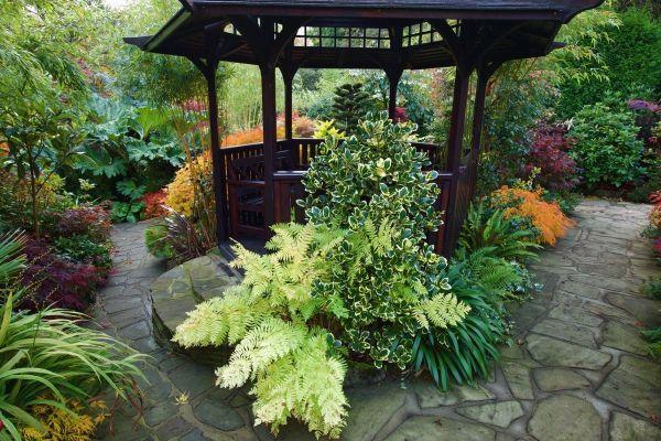 tolles Haus in der Gartengestaltung - Naturgarten anlegen