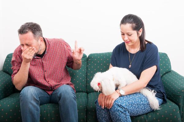 tolles und gesundes Familienleben Hundeallergie