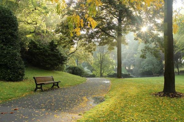 waldbaden gesund park naturtherapie