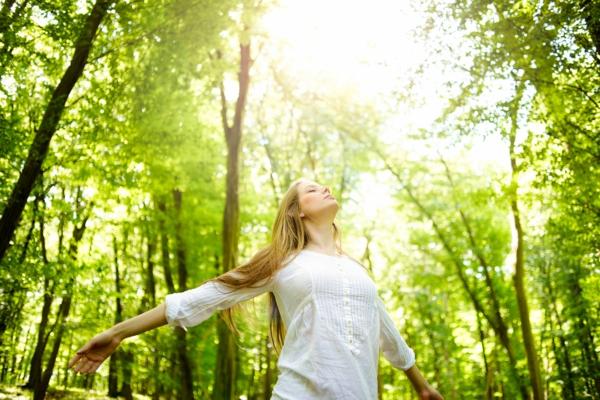 waldbaden wirkung gesunde naturtherapie
