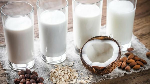 Alternativen zu Kuhmilch Milchalternativen laktosefreie Ernährung
