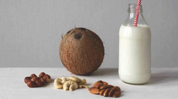 Alternativen zu Kuhmilch Milchalternativen milchfreie Ernährung