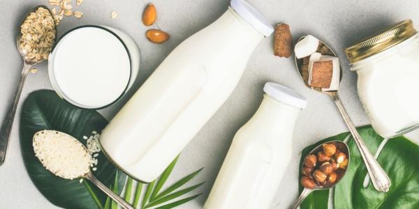 Alternativen zu Kuhmilch verschiedene Milchalternativen