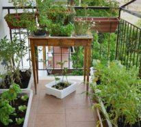 Balkongarten anlegen: Kräuter auf dem Balkon pflanzen leicht gemacht