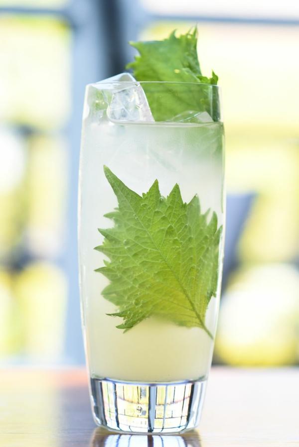Mocktail Rezepte alkoholfreie Cocktails Rezepte Lemongrass YuShi Fizz