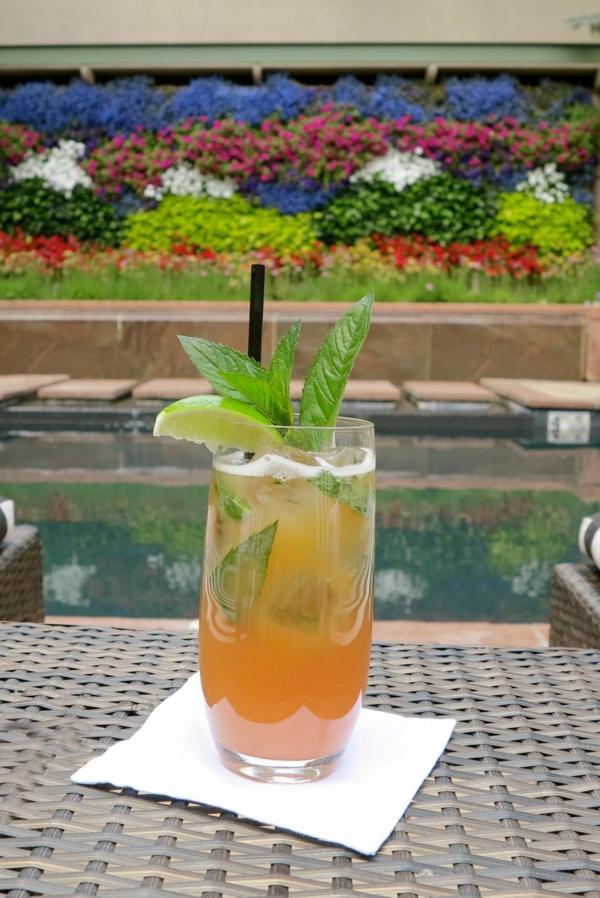 Mocktail Rezepte alkoholfreie Cocktails Rezepte Mountain Mojito Mocktail
