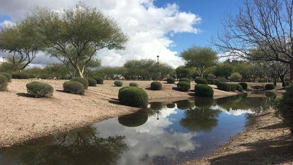 Regenwasser nutzen Teich auffüllen