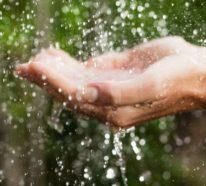 Warum muss man das Regenwasser nutzen und wie kann man das effizient tun?