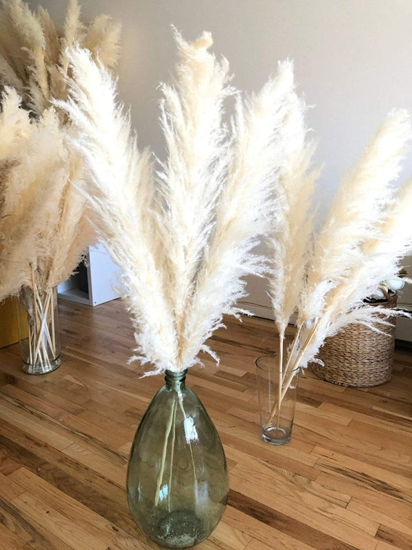 dekorieren mit pampasgras glasvasen