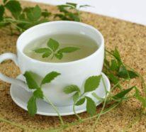 Kraut der Unsterblichkeit – die Heilpflanze Jiaogulan soll noch stärker als Ginseng wirken!