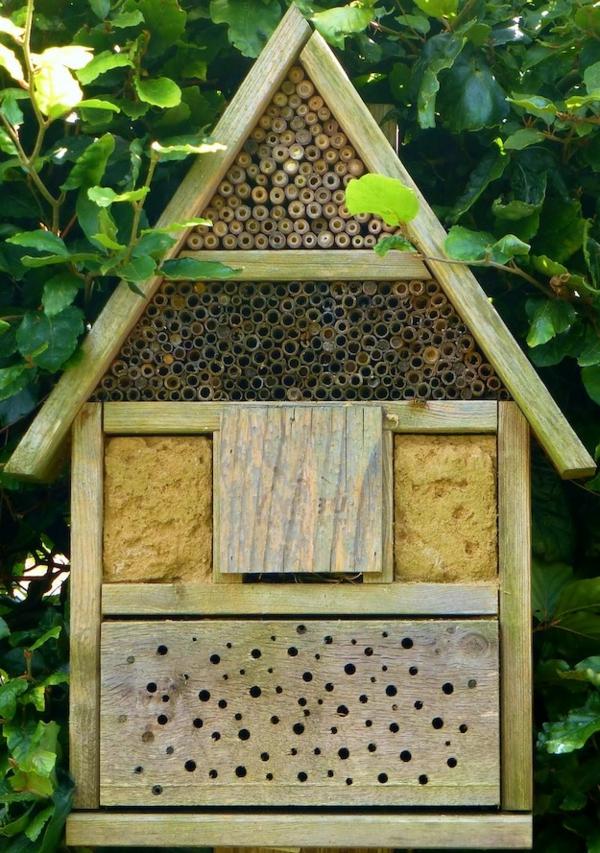 Bienenstock bauen Bienenbeute selber bauen