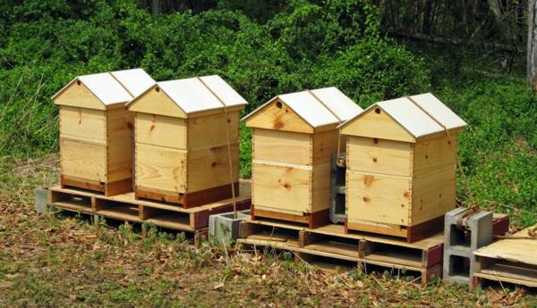 Bienenstock bauen Holz Anleitung