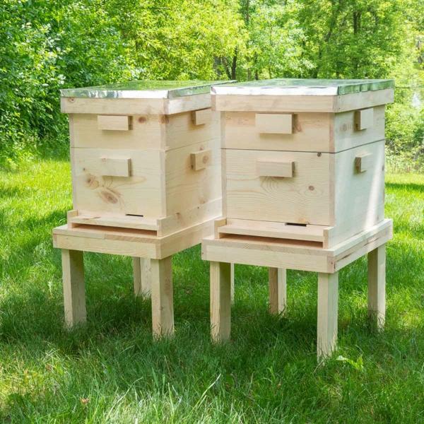 Bienenstock bauen zwei Bienenbeuten